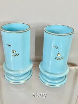 Antique Pair Bristol Glass Robin Egg Blue Vase Raised Floral Birds Enamel 5